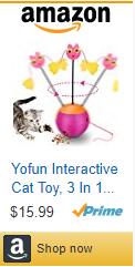 interactive, cat toy, kitten