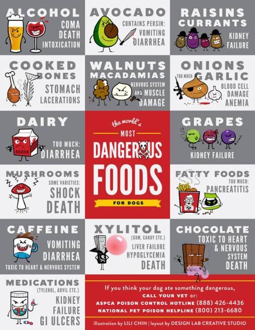 danger-foods